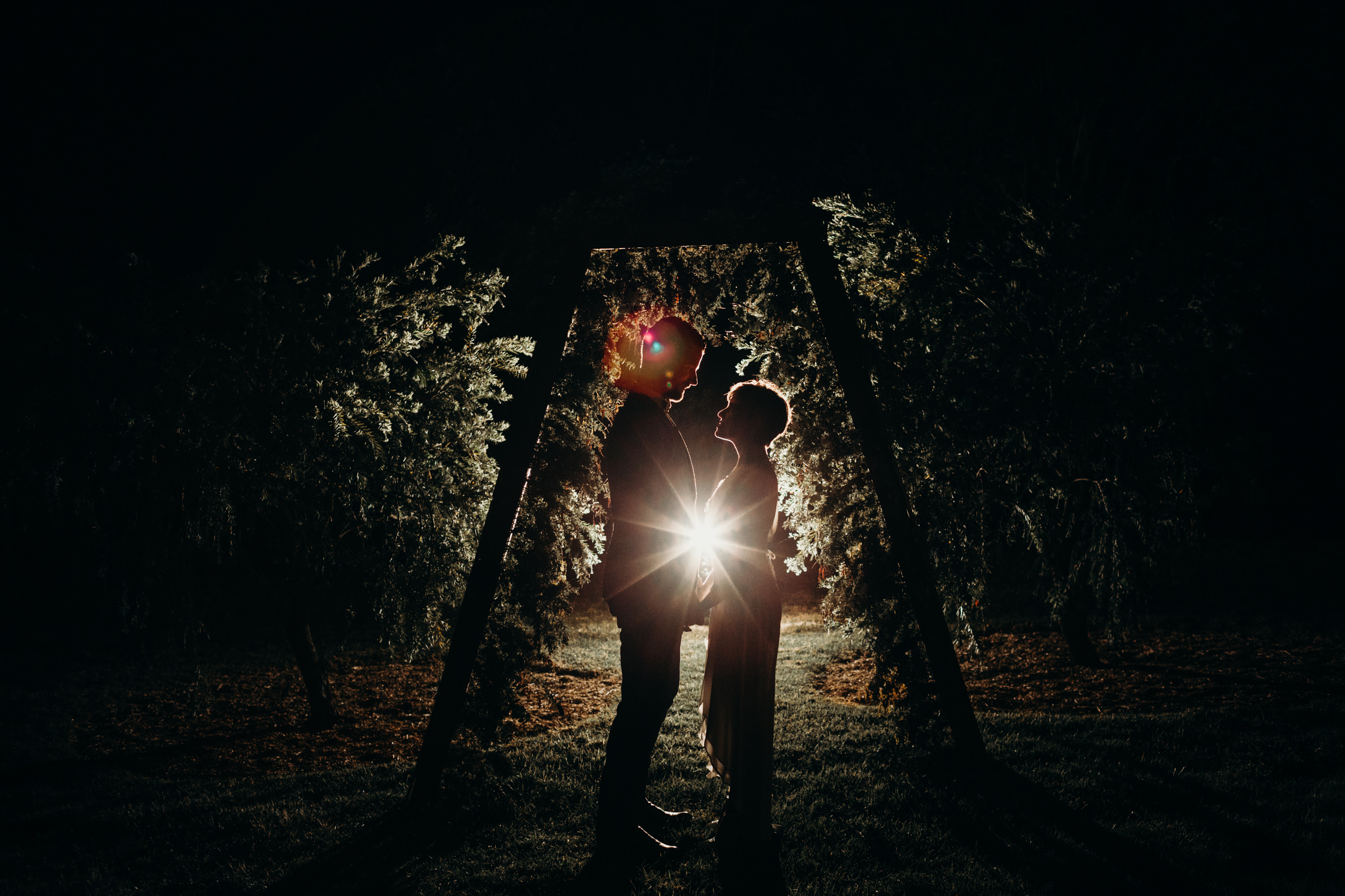 Bride and groom back lit under arbour